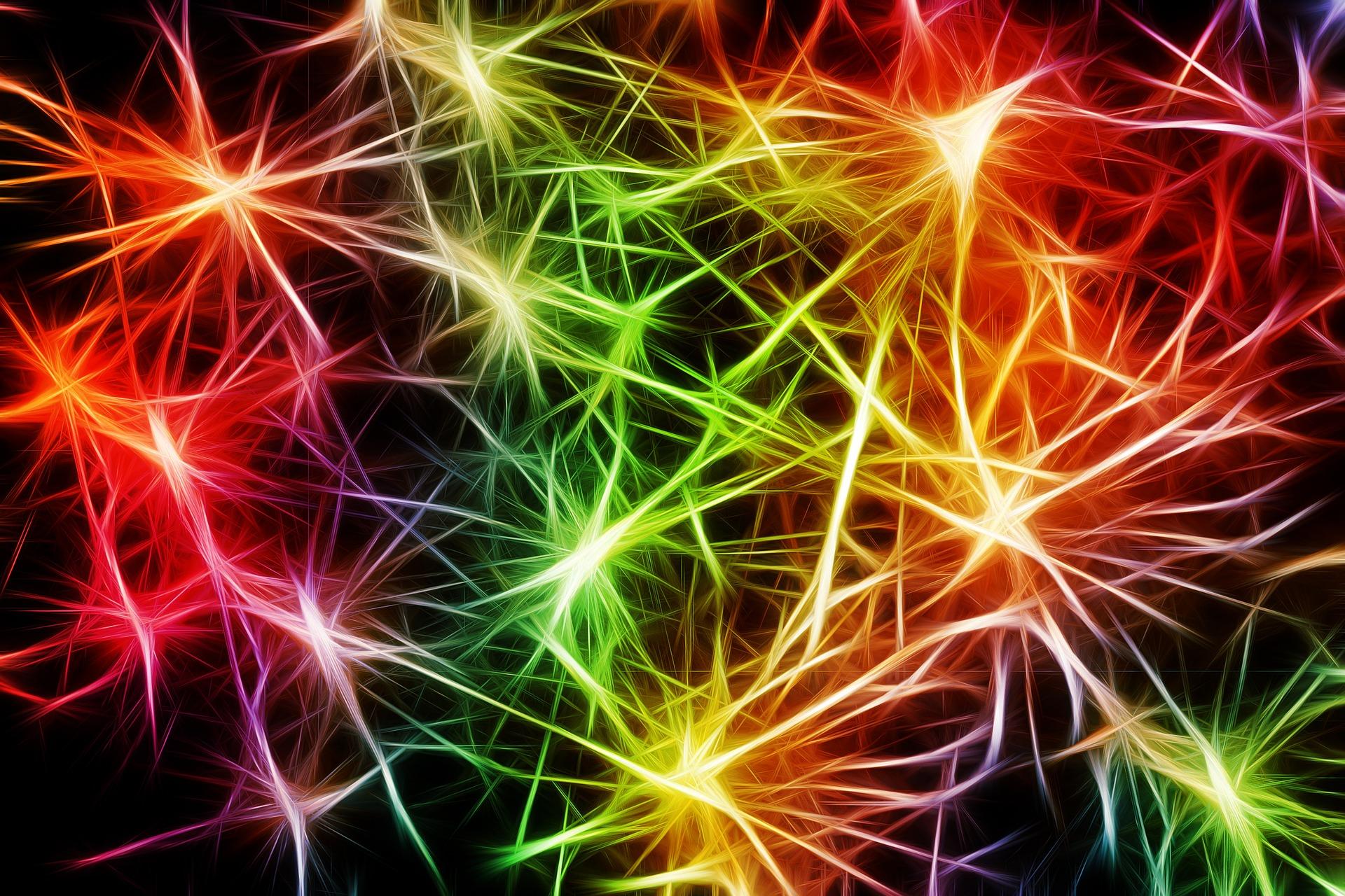 Neurosciences en entreprise ! Neuro….quoi ?